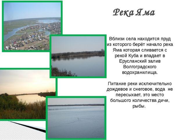 Река Яма   Вблизи села находится пруд из которого берёт начало река Яма кот...