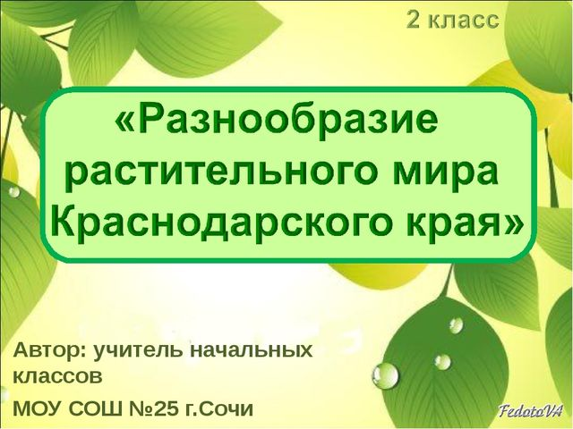 Автор: учитель начальных классов МОУ СОШ №25 г.Сочи Мухина М.В.