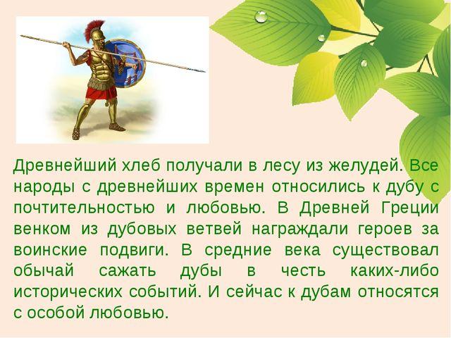 Древнейший хлеб получали в лесу из желудей. Все народы с древнейших времен от...