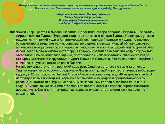 Шумерский эпос о Гильгамеше повествует о приключении к роще ливанских кедров...