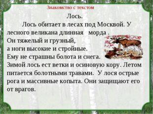 Лось. Лось обитает в лесах под Москвой. У лесного великана длинная морда . О