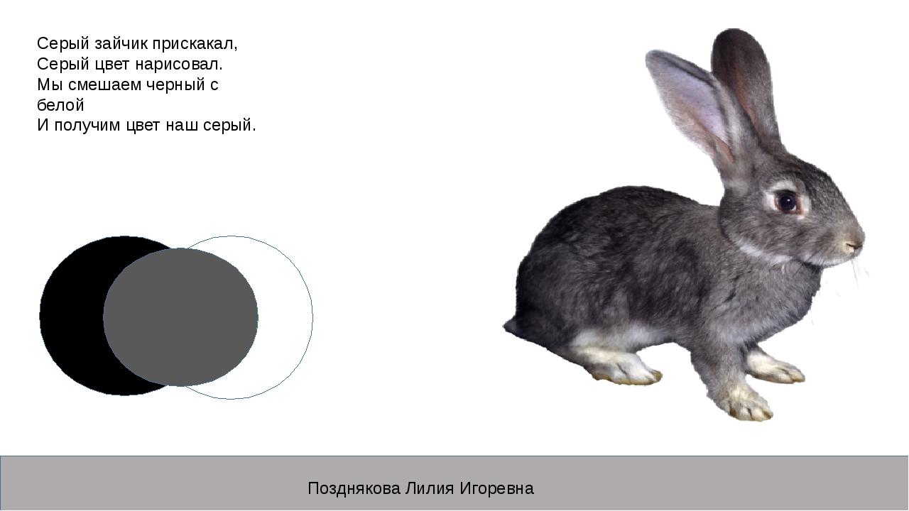 Серый зайчик прискакал, Серый цвет нарисовал. Мы смешаем черный с белой И пол...