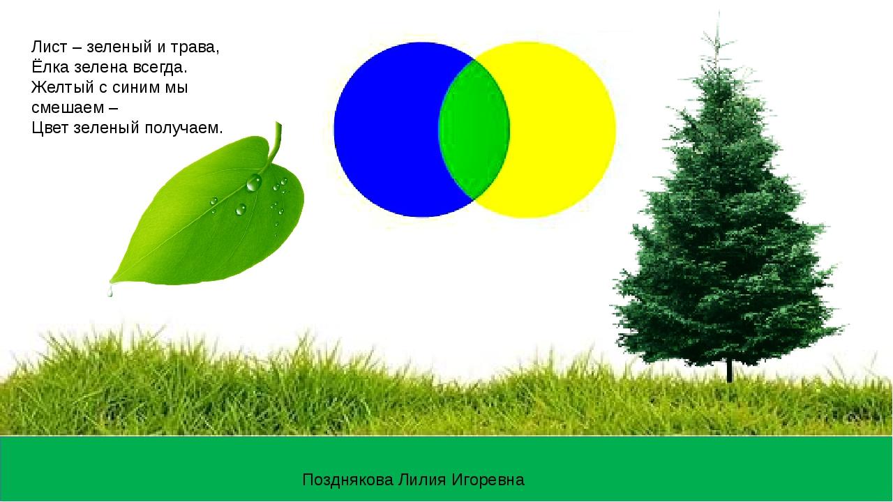 Лист – зеленый и трава, Ёлка зелена всегда. Желтый с синим мы смешаем – Цвет...