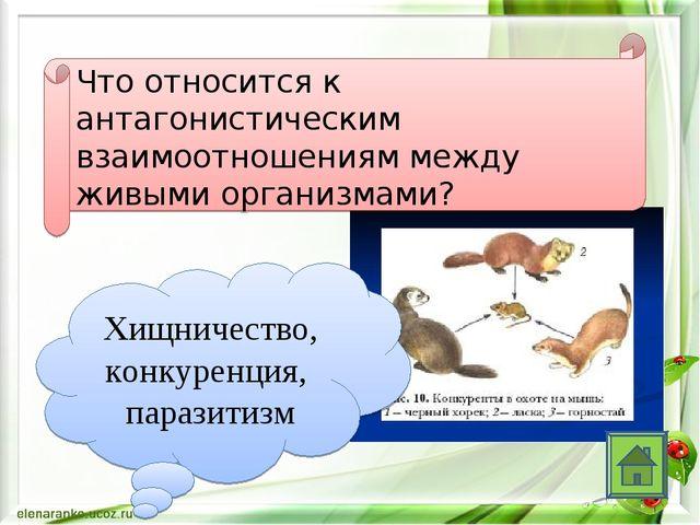 Что относится к антагонистическим взаимоотношениям между живыми организмами?...