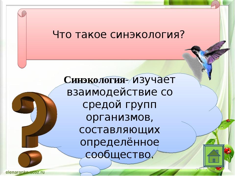 Что такое синэкология? Синэкология- изучает взаимодействие со средой групп ор...