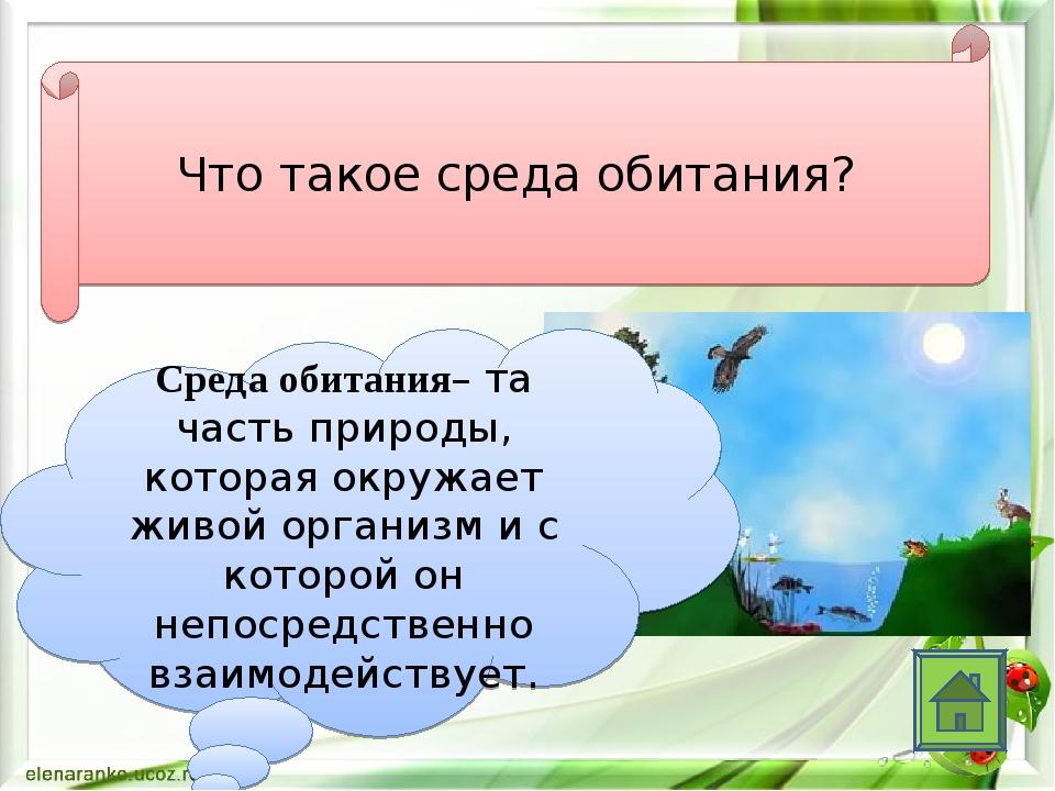 Что такое среда обитания? Среда обитания– та часть природы, которая окружает...