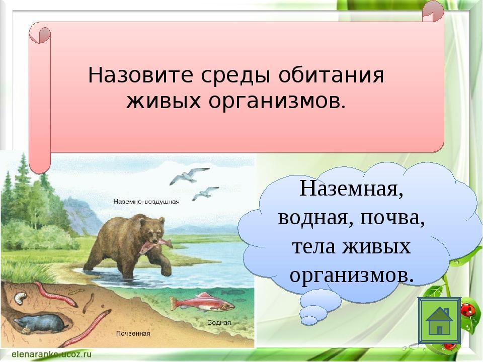 Назовите среды обитания живых организмов. Наземная, водная, почва, тела живых...