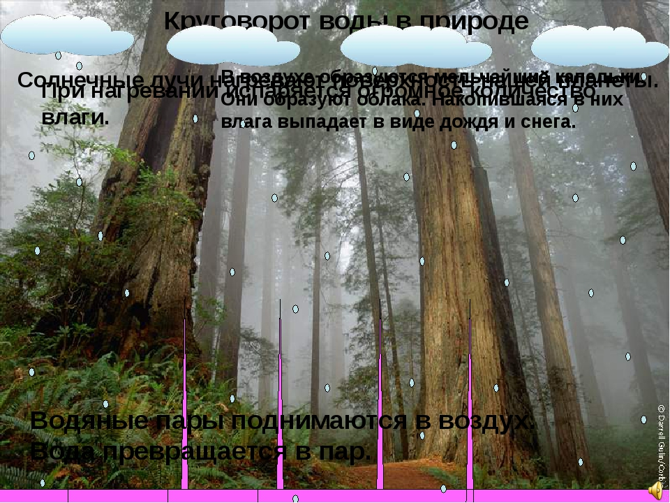 Круговорот воды в природе Водяные пары поднимаются в воздух. Вода превращаетс...