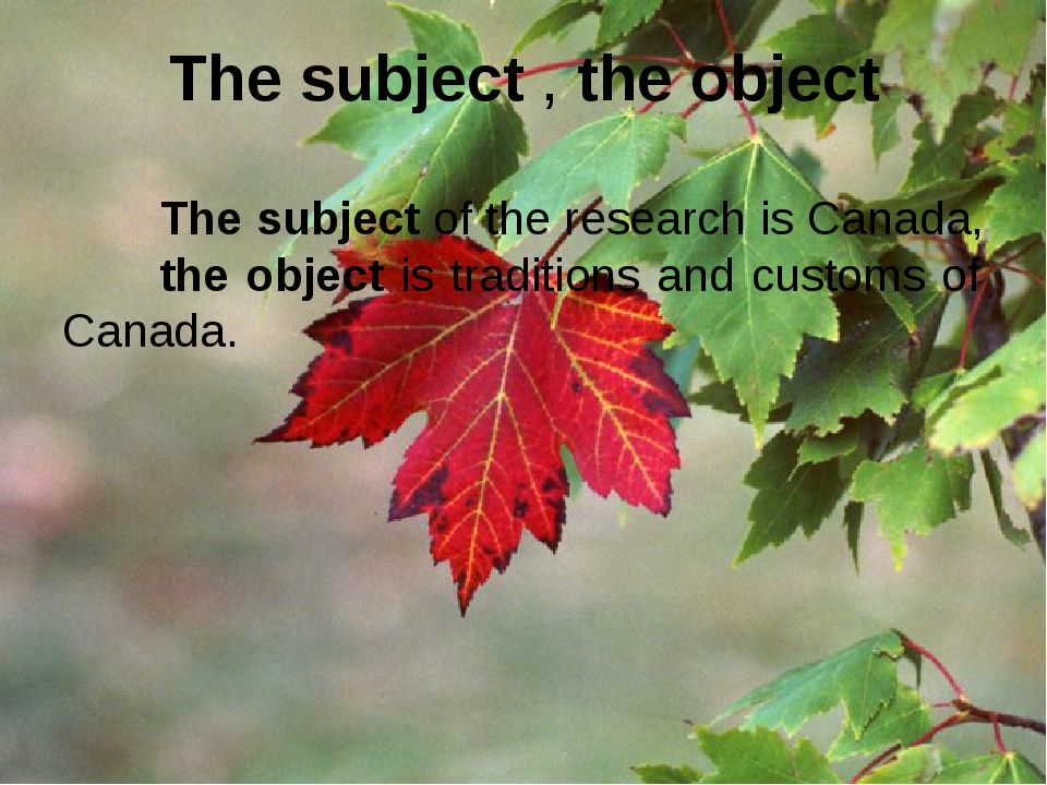 The subject , the object The subject of the research is Canada, the object is...