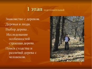 1 этап подготовительный Знакомство с деревом. Деревья и люди. Выбор дерева .