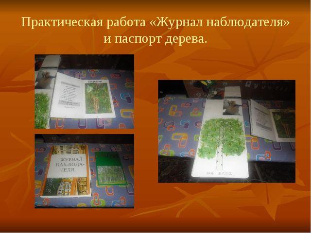 Практическая работа «Журнал наблюдателя» и паспорт дерева.