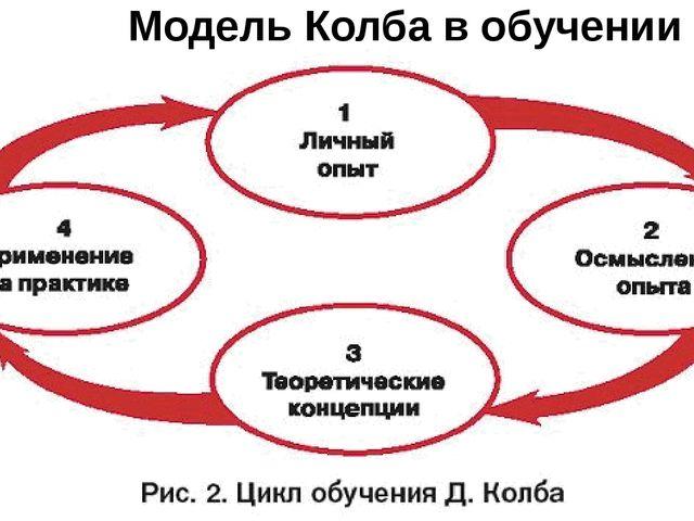Модель Колба в обучении взрослых