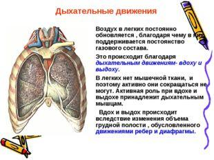 Воздух в легких постоянно обновляется , благодаря чему в них поддерживается п