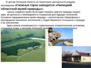 В центре Липецкой области на территории центральной усадьбы заповедника «Гал