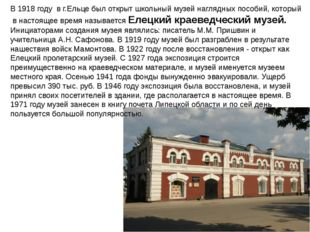 В 1918 году в г.Ельце был открыт школьный музей наглядных пособий, который в