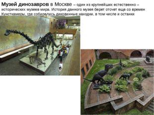Музей динозавровв Москве – один из крупнейших естественно – историческихмуз