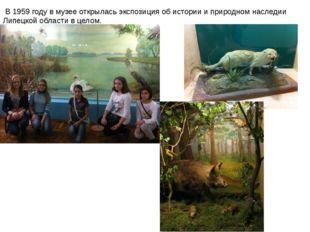 В1959 годув музее открылась экспозиция об истории и природном наследии Лип