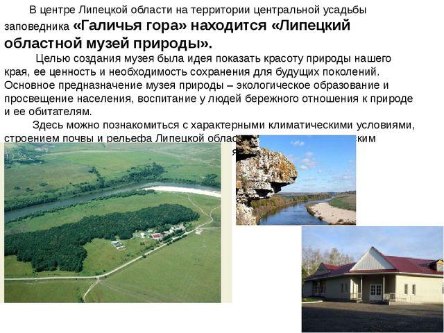 В центре Липецкой области на территории центральной усадьбы заповедника «Гал...