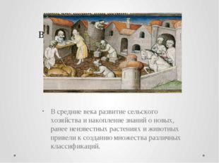 В средние века развитие сельского хозяйства и накопление знаний о новых, ране