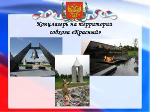 Концлагерь на территории совхоза «Красный»