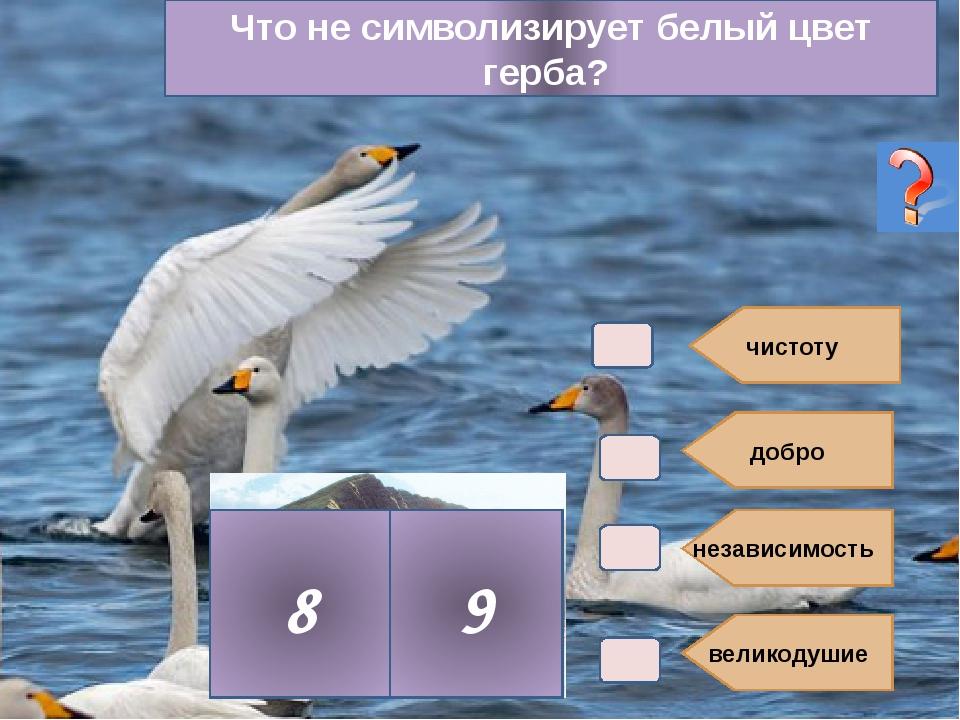 добро независимость великодушие 8 9 чистоту Что не символизирует белый цвет...