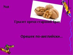 Грызет орехи старший брат Орешек по-английски... Nut