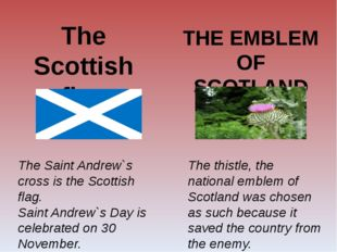 The Scottish flag The Saint Andrew`s cross is the Scottish flag. Saint Andrew