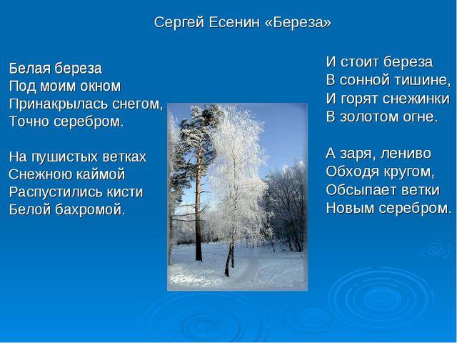 Белая береза Под моим окном Принакрылась снегом, Точно серебром. На пушисты...