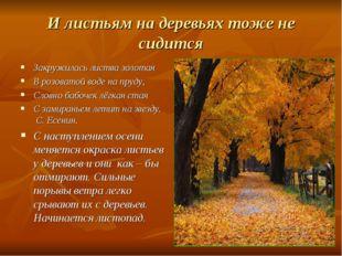 И листьям на деревьях тоже не сидится Закружилась листва золотая В розоватой