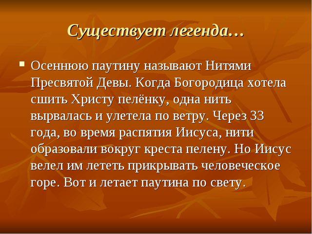 Существует легенда… Осеннюю паутину называют Нитями Пресвятой Девы. Когда Бог...