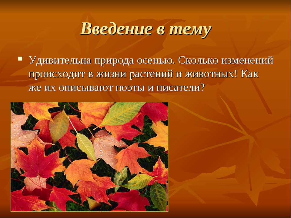 Введение в тему Удивительна природа осенью. Сколько изменений происходит в жи...