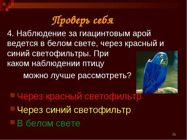 * 4. Наблюдение за гиацинтовым арой ведется в белом свете, через красный и си...