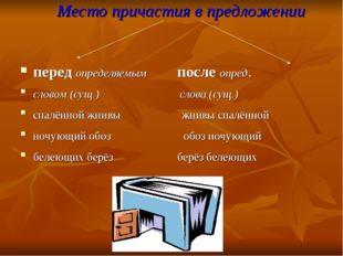 Место причастия в предложении перед определяемым после опред. словом (сущ.) с