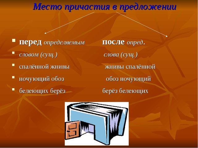 Место причастия в предложении перед определяемым после опред. словом (сущ.) с...