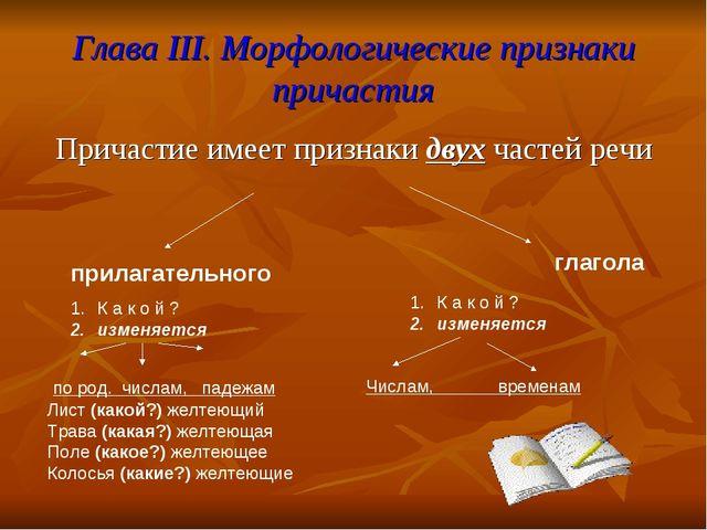 Глава III. Морфологические признаки причастия Причастие имеет признаки двух ч...