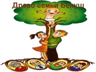 Древо семьи Белуш