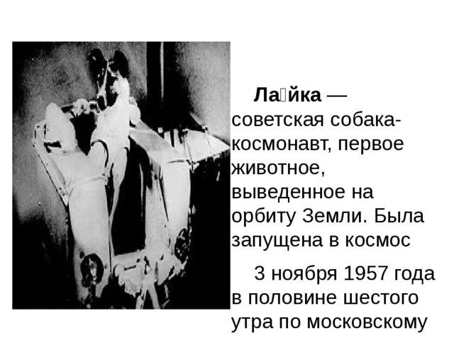 Ла́йка — советская собака-космонавт, первое животное, выведенное на орбиту З...