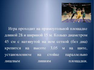 Игра проходит на прямоугольной площадке длиной 28 и шириной 15 м. Кольцо диа