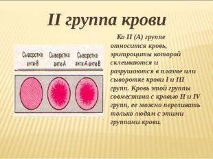 II группа крови Ко II (А) группе относится кровь, эритроциты которой склеиваю