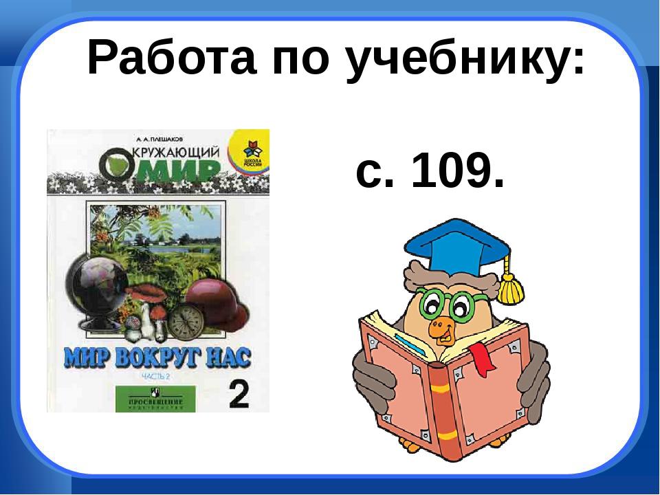 Работа по учебнику: с. 109.