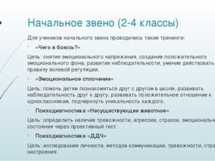Начальное звено (2-4 классы) Для учеников начального звена проводились такие