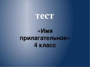 тест «Имя прилагательное» 4 класс