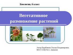 Вегетативное размножение растений Биология, 6 класс Автор Барабанова Оксана В