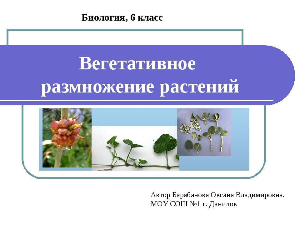 Вегетативное размножение растений Биология, 6 класс Автор Барабанова Оксана В...