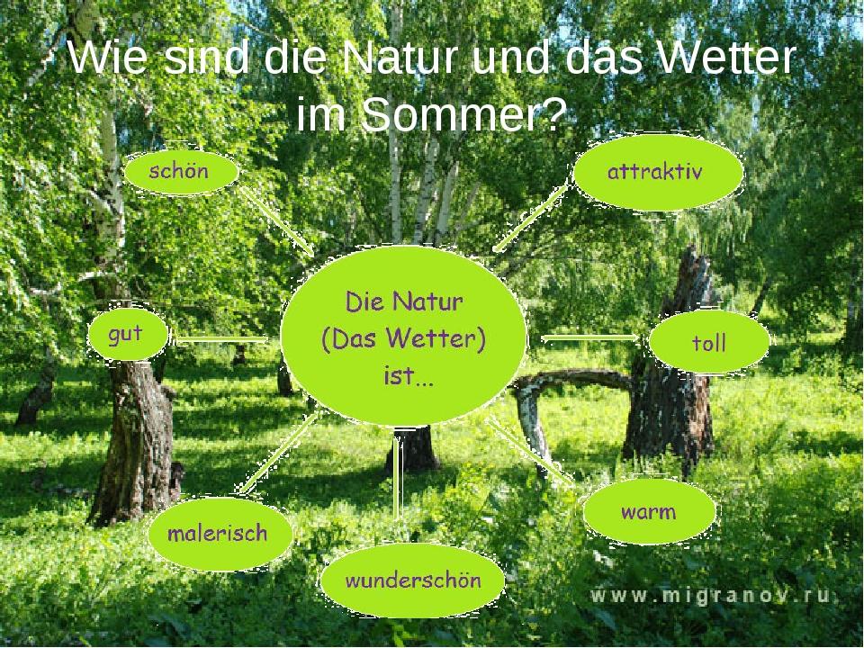 Wie sind die Natur und das Wetter im Sommer?