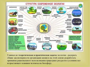 Главная же теоретическая и практическая задача экологии - раскрыть общие зако