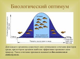 Биологический оптимум Для каждого организма существует свое оптимальное сочет