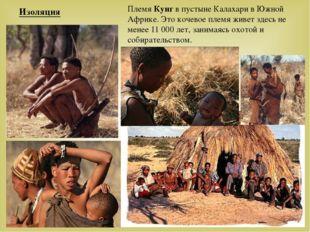 Племя Кунг в пустыне Калахари в Южной Африке. Это кочевое племя живет здесь н