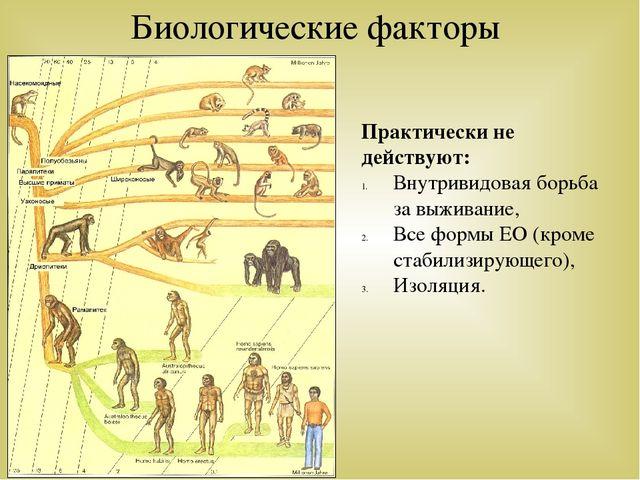 Практически не действуют: Внутривидовая борьба за выживание, Все формы ЕО (кр...