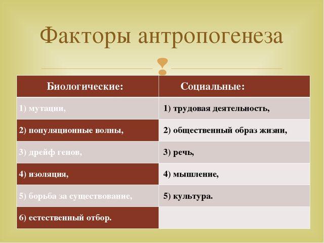 Факторы антропогенеза Биологические: Социальные: 1)мутации, 1)трудовая дея...